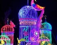 Snug Harbor Cultural Center & Botanical Garden Lantern Festival